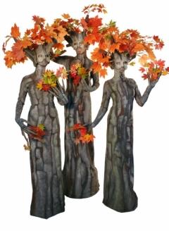 Autumn Maple Tree Trio - Imgur