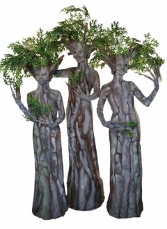 Green Oak Tree Trio - Imgur