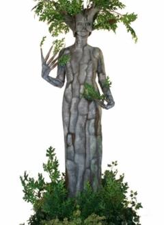 Green Oak Tree in Planter - Imgur