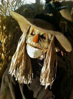 Scary Scarecrow - Imgur
