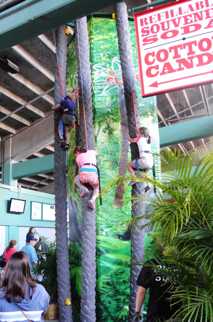 boston_party_entertainment_inflatables_Coconut Tree Climb_1
