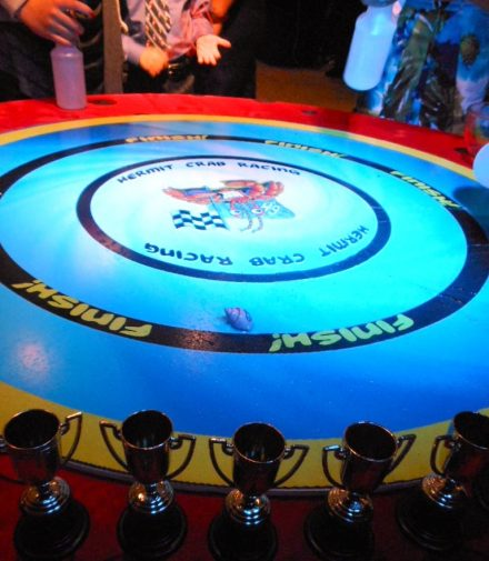 boston_party_entertainment_arcade_Hermit Crab Racing_3