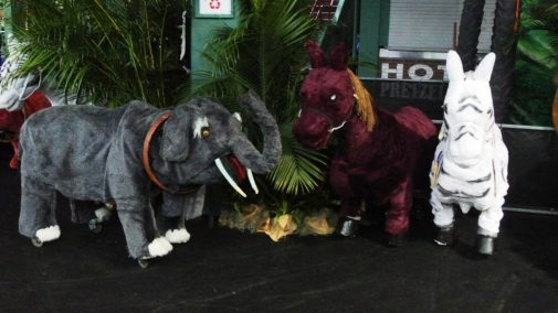 boston_party_entertainment_inflatables_Safari Ride Along - 4 Animals_2