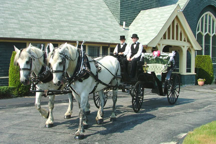 boston_party_entertainment_variety_performers_ Horse Drawn Carriage Ride (3 Hours)_1