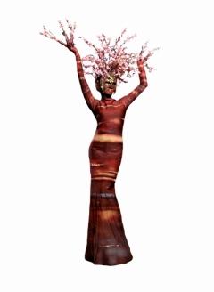 Blossom Tree - Imgur 2