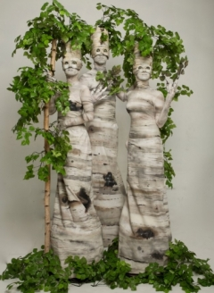 Green Birch Tree Trio - Imgur