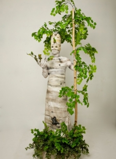 Green Birch Tree in Planter - Imgur