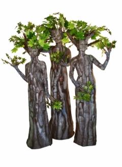 Green Maple Tree Trio - Imgur