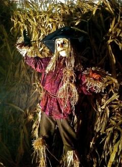 Scary Scarecrow 2 - Imgur