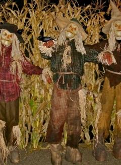 Scary-Scarecrow-Trio---Imgura
