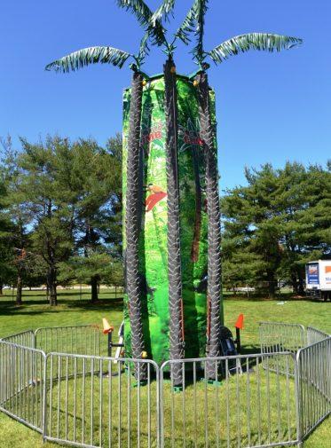 boston_party_entertainment_inflatables_Coconut Tree Climb_3