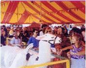 boston_party_entertainment_carnival_picnic_games_petting_zoo1
